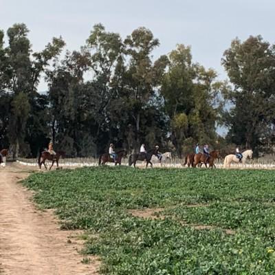 rutas caballo cordoba